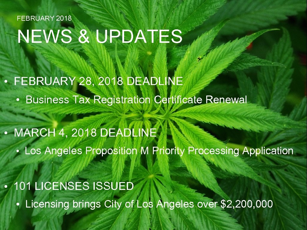 FEBRUARY 2018 NEWS & UPDATES • FEBRUARY 28, 2018 DEADLINE • Business Tax Registration