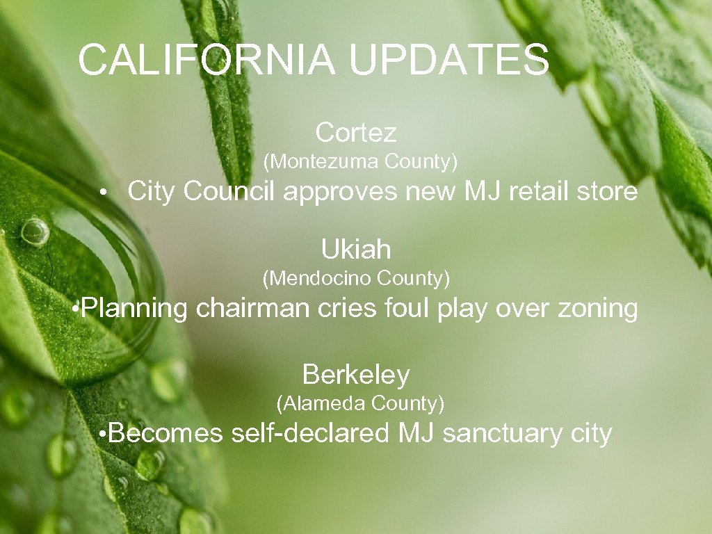 CALIFORNIA UPDATES Cortez (Montezuma County) • City Council approves new MJ retail store Ukiah