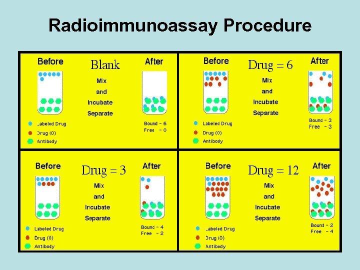 Radioimmunoassay Procedure