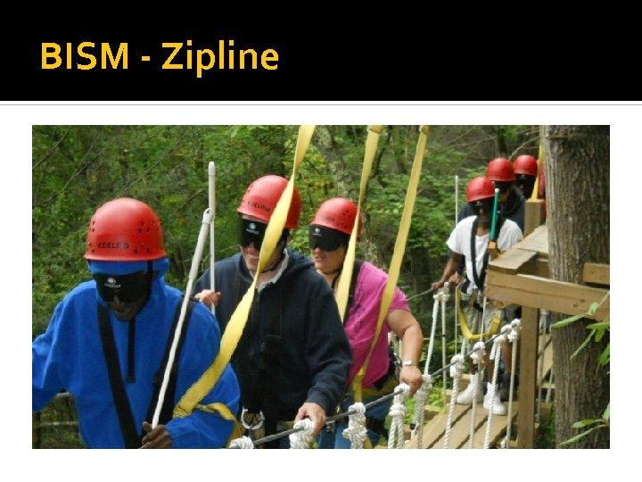BISM - Zipline
