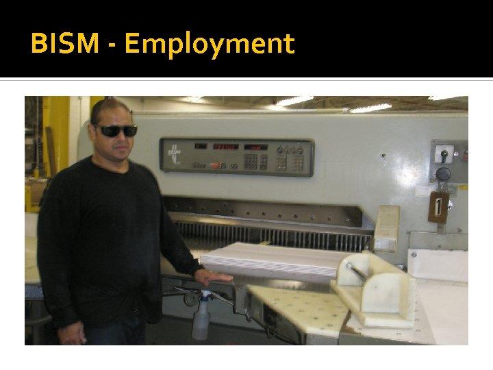 BISM - Employment