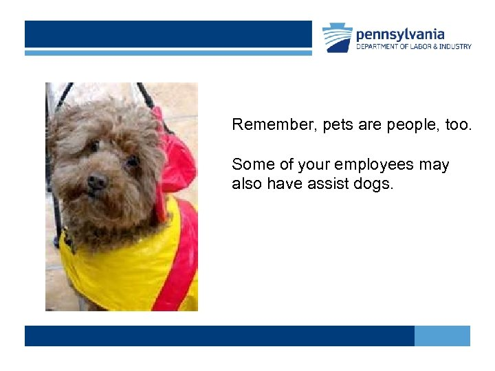 Remember, pets are people, too. Some of your employees may also have assist dogs.