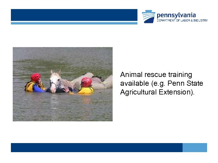 Animal rescue training available (e. g. Penn State Agricultural Extension).