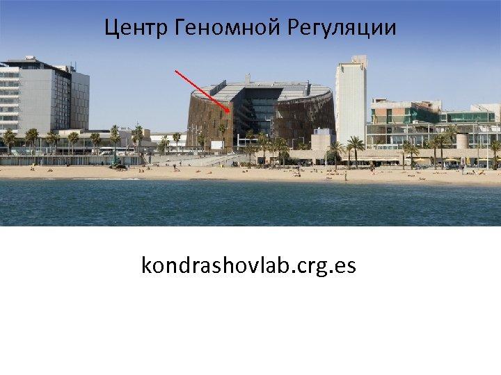 Центр Геномной Регуляции kondrashovlab. crg. es