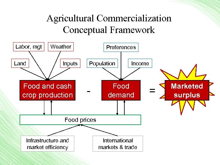 Agricultural Commercialization Conceptual Framework Labor, mgt Land Weather Inputs Food and cash crop production