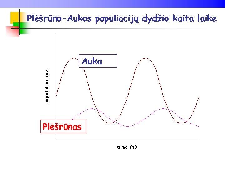 Plėšrūno-Aukos populiacijų dydžio kaita laike Auka Plėšrūnas