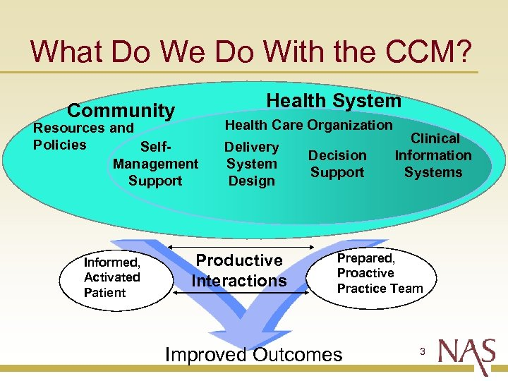 What Do We Do With the CCM? Community Health System Resources and Policies Self.