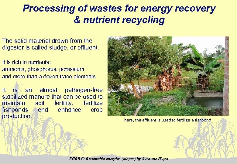 Processing of wastes for energy recovery & nutrient recycling The solid material drawn from