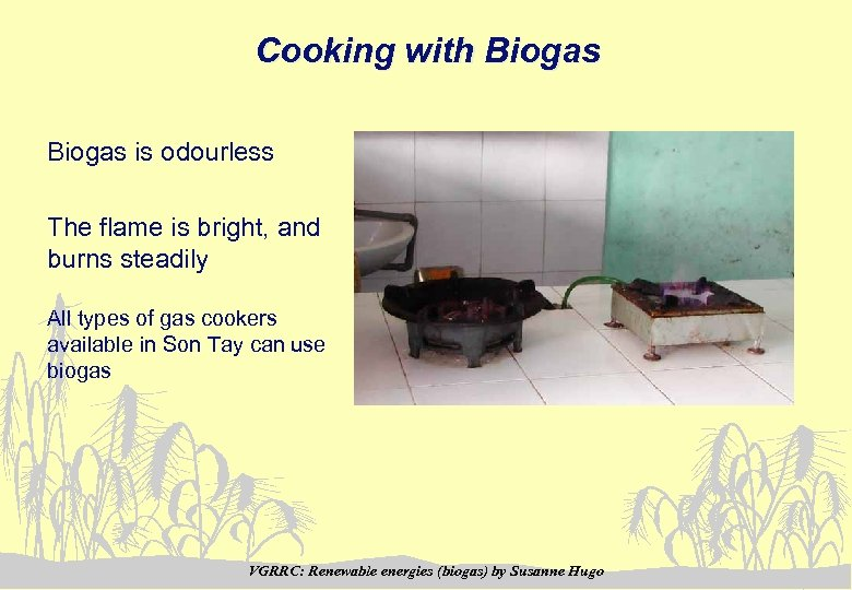 Cooking with Biogas is odourless The flame is bright, and burns steadily All types