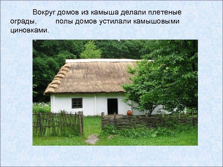 Вокруг домов из камыша делали плетеные ограды, полы домов устилали камышовыми циновками.