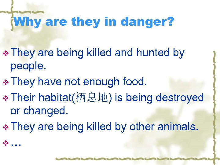 Why are they in danger? v They are being killed and hunted by people.