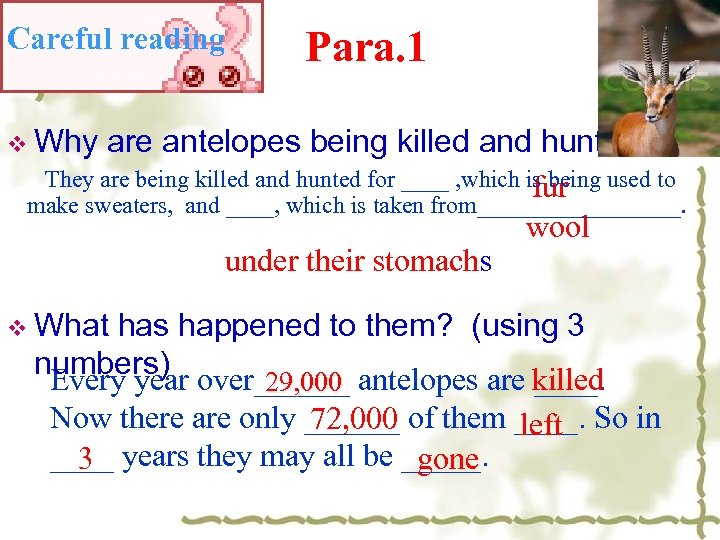 Careful reading Para. 1 v Why are antelopes being killed and hunted? They are