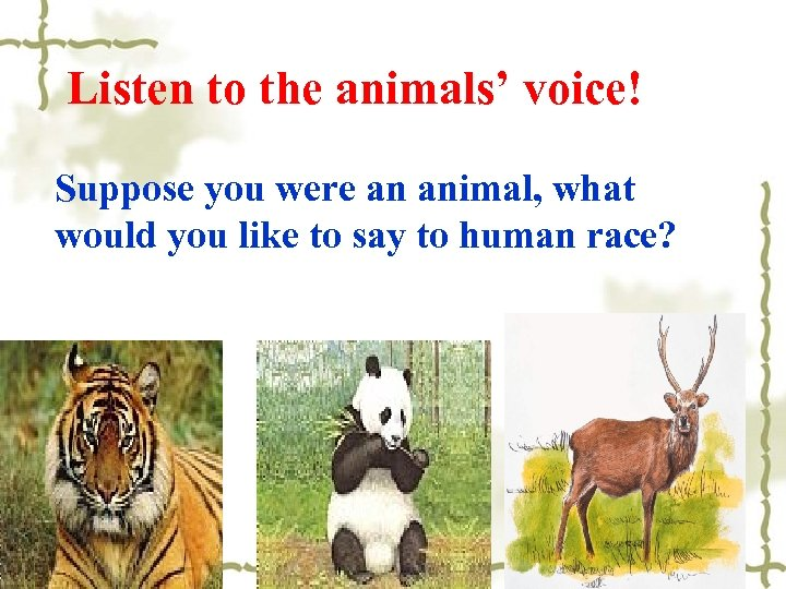 Listen to the animals' voice! Suppose you were an animal, what would you like