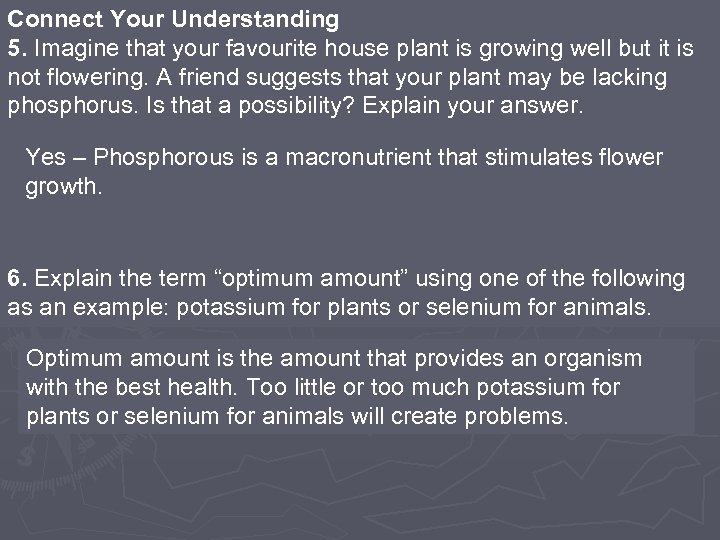 Connect Your Understanding 5. Imagine that your favourite house plant is growing well but