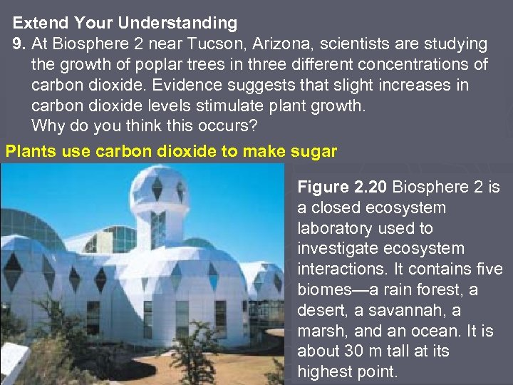 Extend Your Understanding 9. At Biosphere 2 near Tucson, Arizona, scientists are studying the