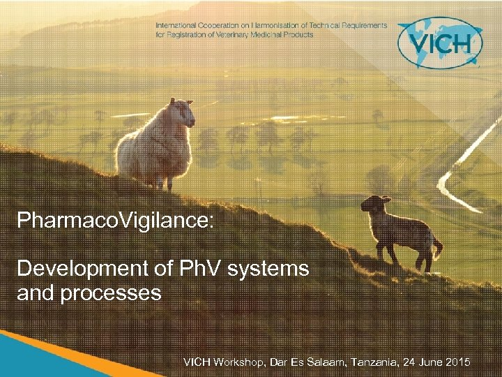 Pharmaco. Vigilance: Development of Ph. V systems and processes VICH Workshop, Dar Es Salaam,