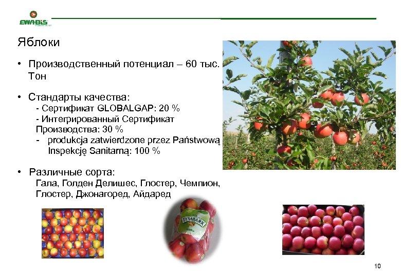 Яблоки • Производственный потенциал – 60 тыс. Тон • Стандарты качества: - Сертификат GLOBALGAP:
