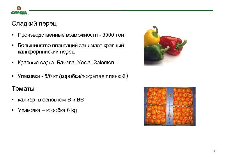 Сладкий перец • Производственные возможности - 3500 тон • Большинство плантаций занимает красный калифорнийский