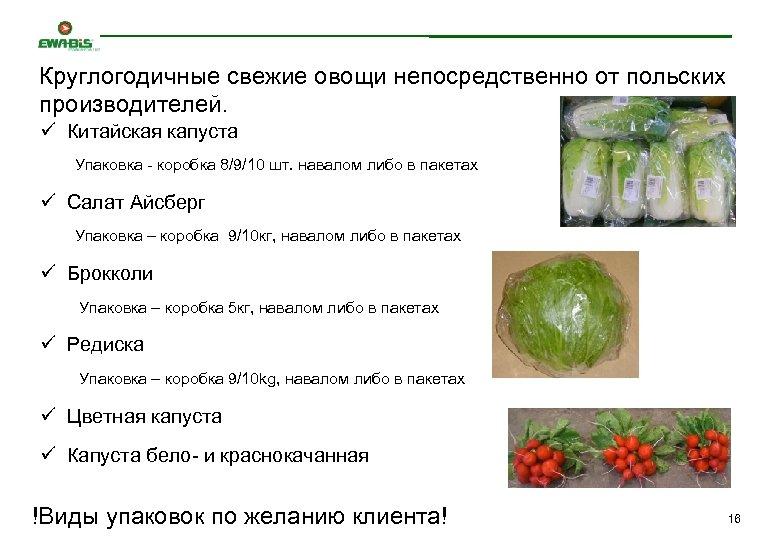 Круглогодичные свежие овощи непосредственно от польских производителей. ü Китайская капуста Упаковка - коробка 8/9/10