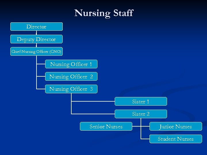 Nursing Staff Director Deputy Director Chief Nursing Officer (CNO) Nursing Officer 1 Nursing Officer