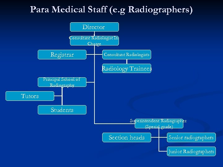 Para Medical Staff (e. g Radiographers) Director Consultant Radiologist In Charge Registrar Consultant Radiologists