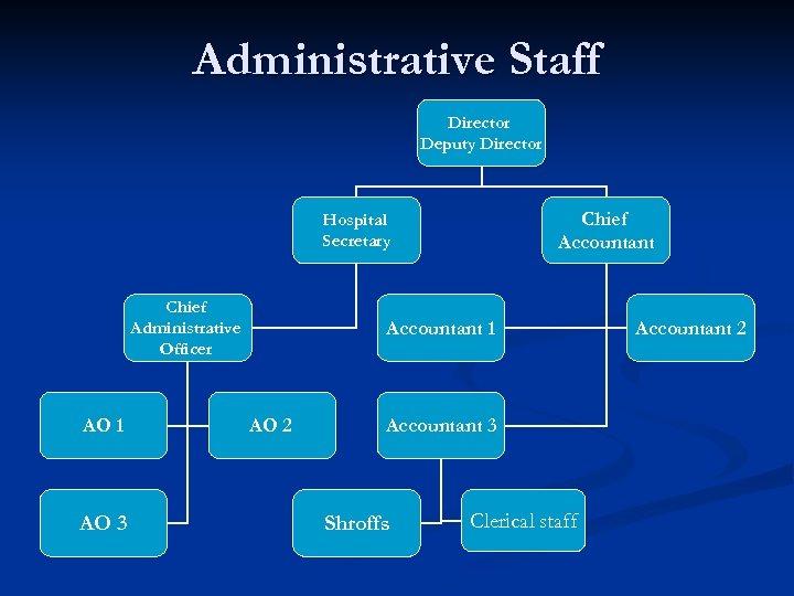Administrative Staff Director Deputy Director Chief Accountant Hospital Secretary Chief Administrative Officer AO 1