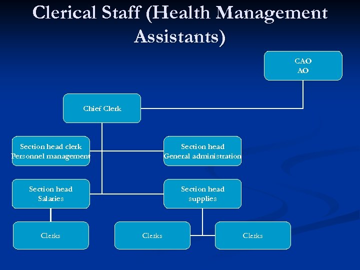 Clerical Staff (Health Management Assistants) CAO AO Chief Clerk Section head clerk Personnel management