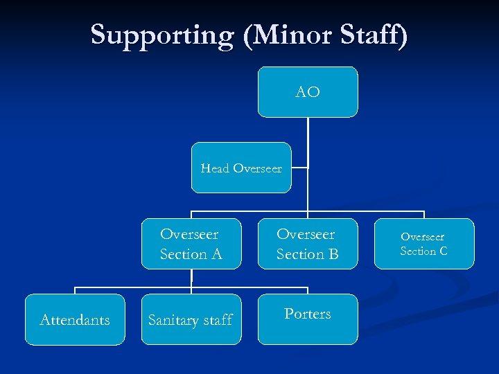 Supporting (Minor Staff) AO Head Overseer Section A Attendants Overseer Section B Sanitary staff
