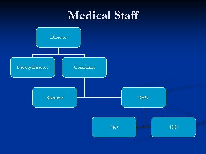 Medical Staff Director Deputy Director Consultant Registrar SHO HO HO
