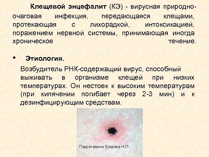 Клещевой энцефалит (КЭ) - вирусная природноочаговая инфекция, передающаяся клещами, протекающая с лихорадкой, интоксикацией,