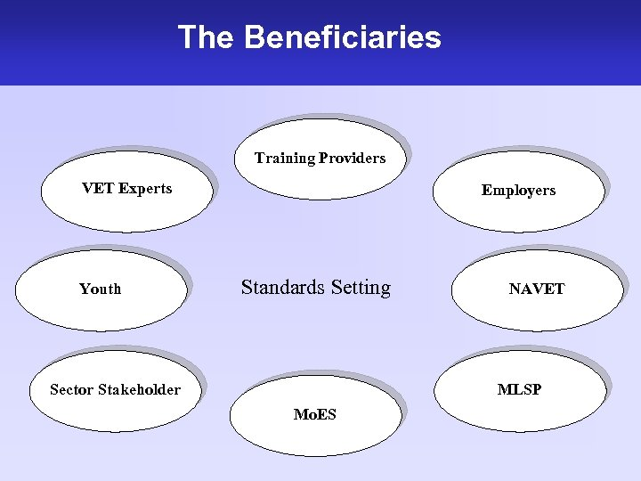 The Beneficiaries Training Providers VET Experts Youth Employers Standards Setting Sector Stakeholder NAVET MLSP