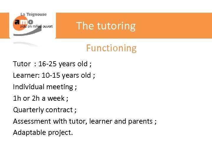 The tutoring Functioning Tutor : 16 -25 years old ; Learner: 10 -15 years