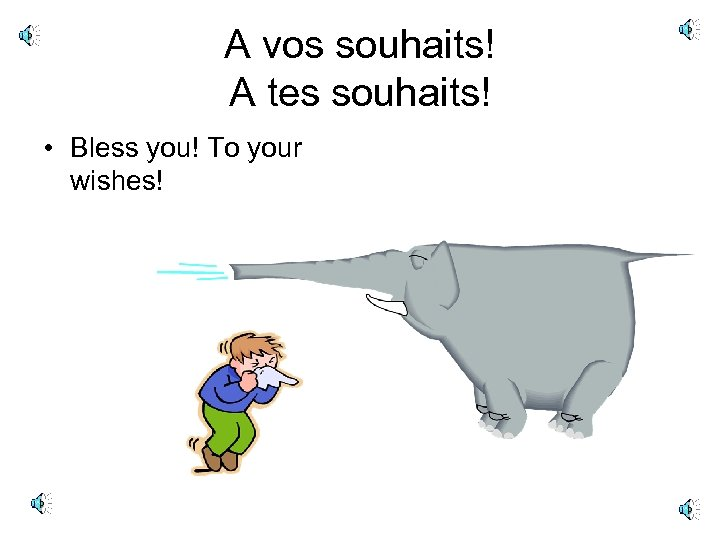 A vos souhaits! A tes souhaits! • Bless you! To your wishes!