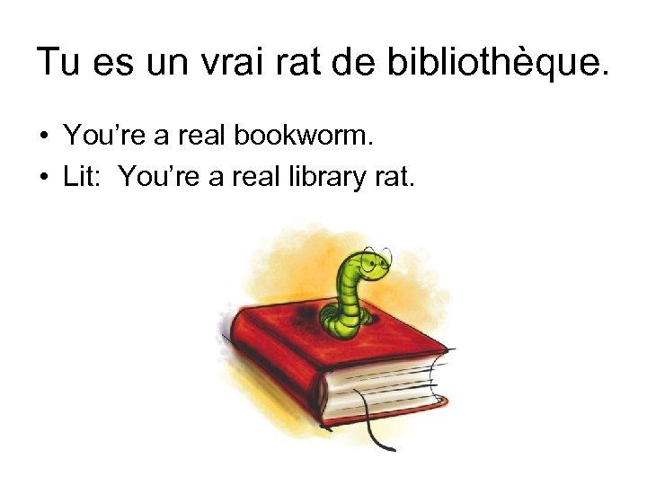 Tu es un vrai rat de bibliothèque. • You're a real bookworm. • Lit: