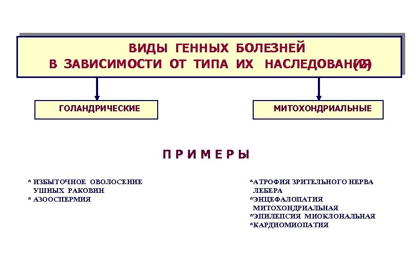 ВИДЫ ГЕННЫХ БОЛЕЗНЕЙ В ЗАВИСИМОСТИ ОТ ТИПА ИХ НАСЛЕДОВАНИЯ (2) ГОЛАНДРИЧЕСКИЕ МИТОХОНДРИАЛЬНЫЕ П Р