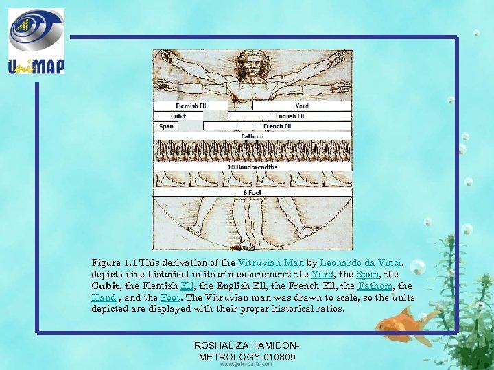 Figure 1. 1 This derivation of the Vitruvian Man by Leonardo da Vinci, depicts