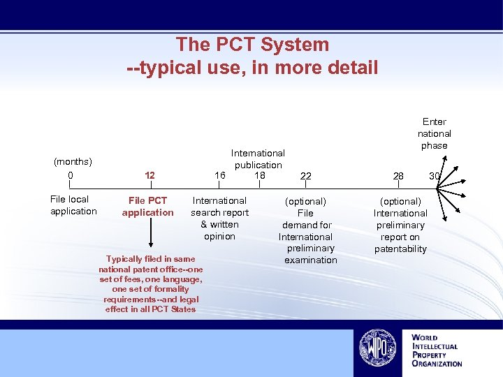 The PCT System --typical use, in more detail (months) 0 12 File local application