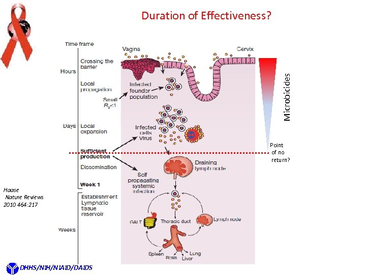 Microbicides Duration of Effectiveness? Point of no return? Haase Nature Reviews 2010 464: 217