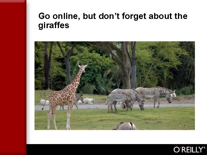 Go online, but don't forget about the giraffes