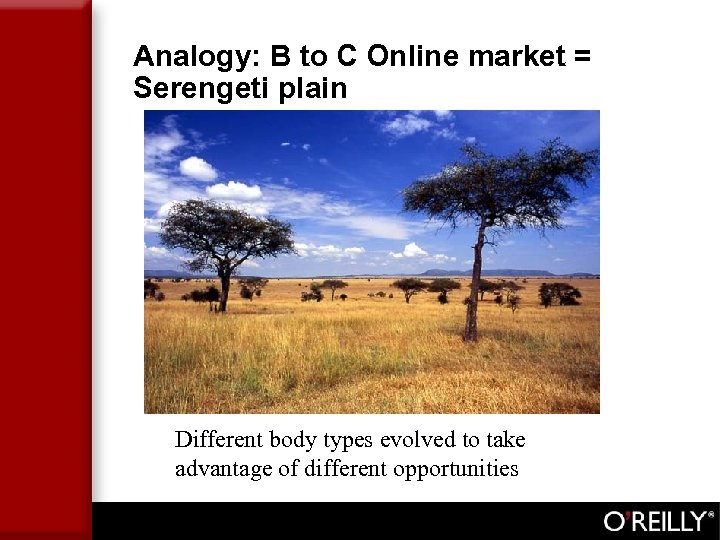 Analogy: B to C Online market = Serengeti plain Different body types evolved to