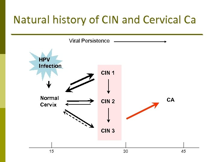 Natural history of CIN and Cervical Ca Viral Persistence HPV Infection CIN 1 Normal