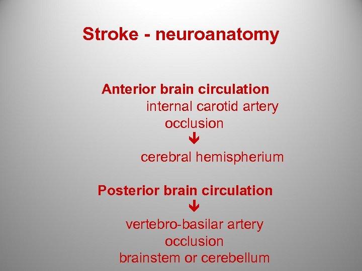 Stroke - neuroanatomy Anterior brain circulation internal carotid artery occlusion cerebral hemispherium Posterior brain