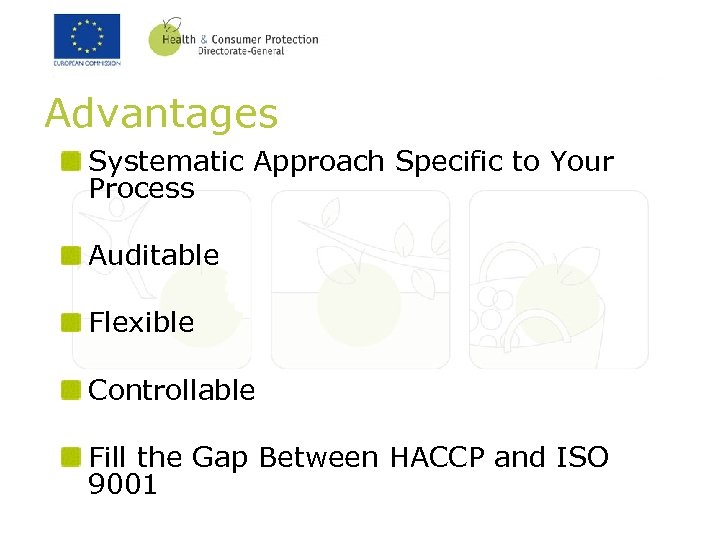 Advantages Systematic Approach Specific to Your Process Auditable Flexible Controllable Fill the Gap Between