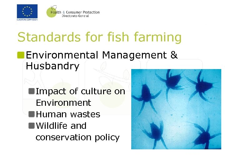 Standards for fish farming Environmental Management & Husbandry Impact of culture on Environment Human