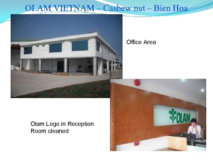 OLAM VIETNAM – Cashew nut – Bien Hoa Office Area Olam Logo in Reception