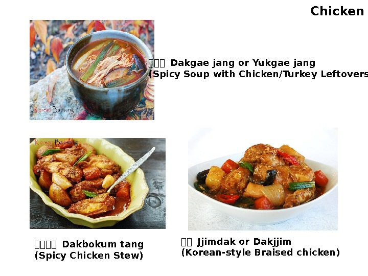 Chicken 한한한 Dakgae jang or Yukgae jang (Spicy Soup with Chicken/Turkey Leftovers) 한한한한 Dakbokum