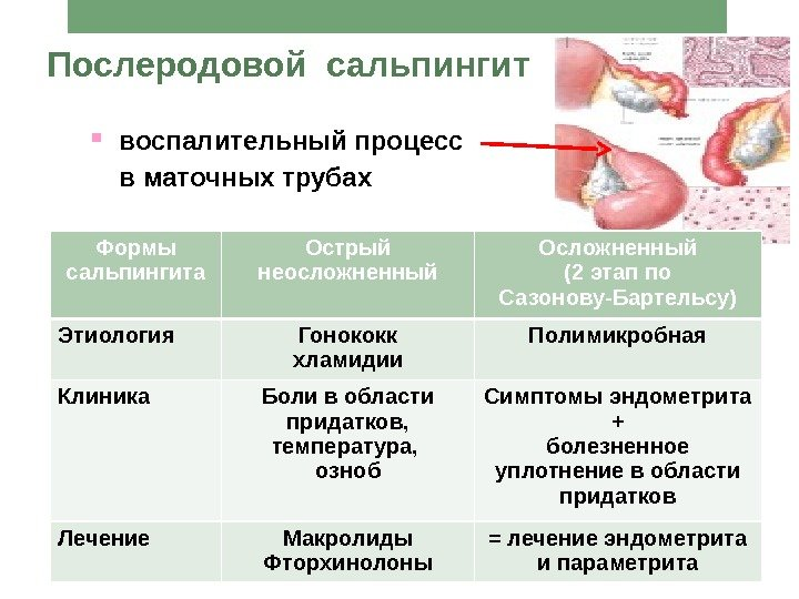 Харьковский национальный университет им. Н. М. Каразина