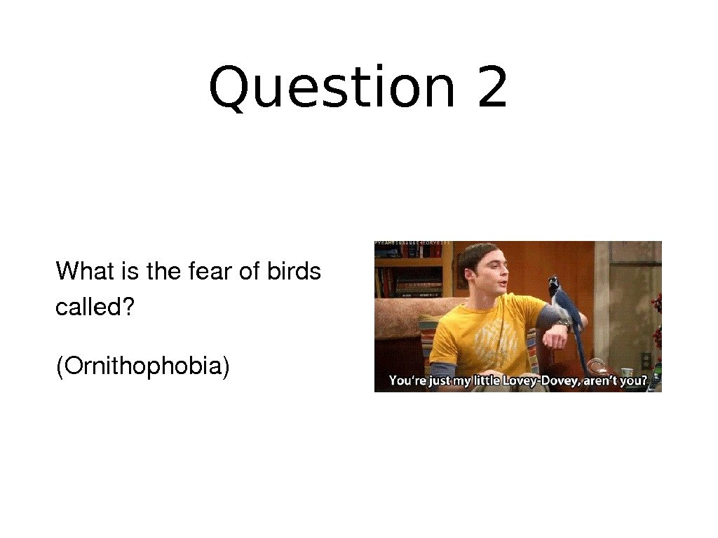 Question 2 Whatisthefearofbirds called? (Ornithophobia)