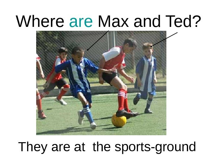 Where are Max and Ted? They are at the sports-ground