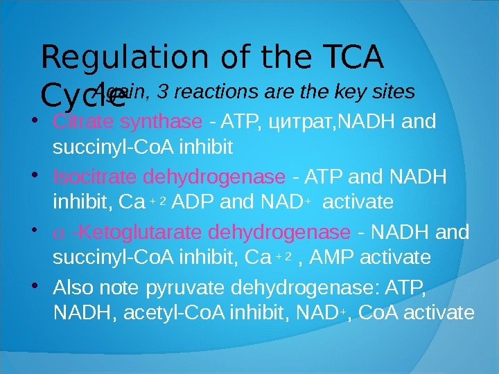 Regulation of the TCA Cycle Again, 3 reactions are the key sites  Citrate synthase -